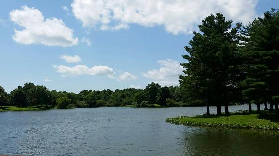 Mahomet, Илинойс: lake of the woods county park