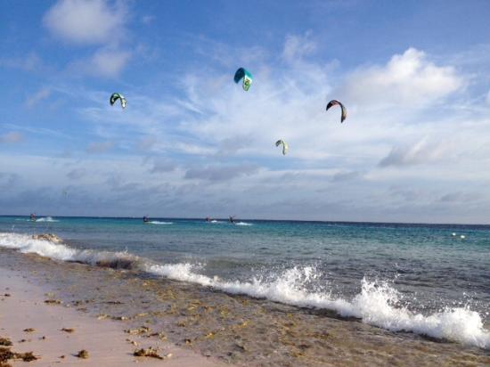 Kiteboarding Bonaire: Tag oder..