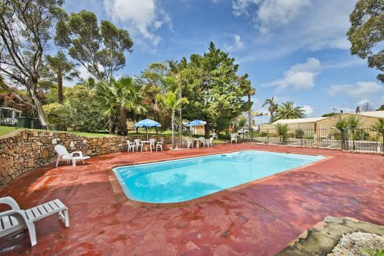 Acclaim Pine Grove Holiday Park: Swimming Pool Area