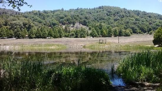Palomar Mountain State Park: Doane pond