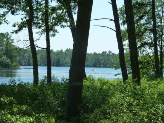 Tuckerton, NJ: The neighboring cabin view.