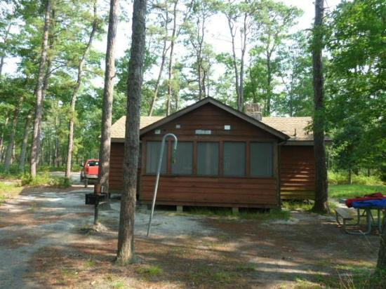Cabin Stay Not Great   Review Of Bass River State Forest, Tuckerton, NJ    TripAdvisor