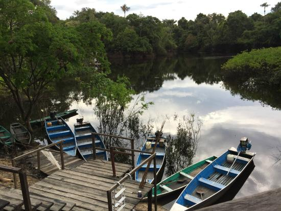 Amazonia Expeditions' Tahuayo Lodge: ARC lodge boating dock