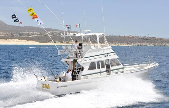 Picudo Sportfishing Day Charters