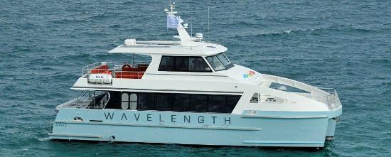 Wavelength Reef Charters