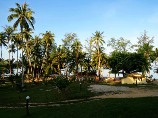 S-Beach Resort: Vista da varanda sobre o coqueiral.