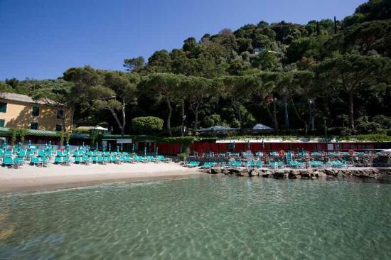 Bagni Fiore - Picture of Bagni Fiore, Santa Margherita Ligure - TripAdvisor