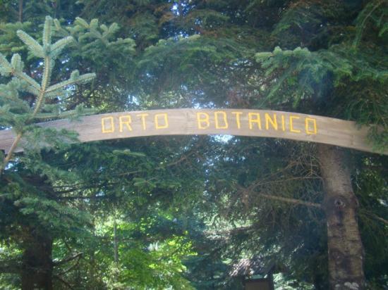 Parco di Villa Vittoria
