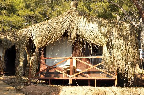 Ayvalik Camping
