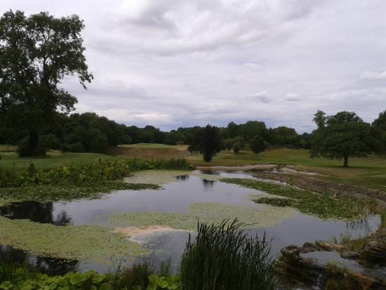 Manor House Golf Club: Scenic View