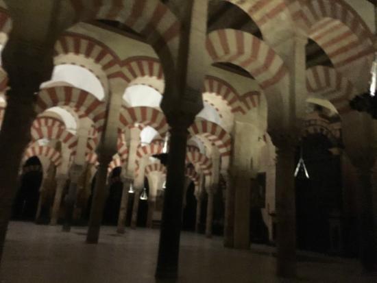 写真コルドバのメスキータ (大聖堂とモスク)枚