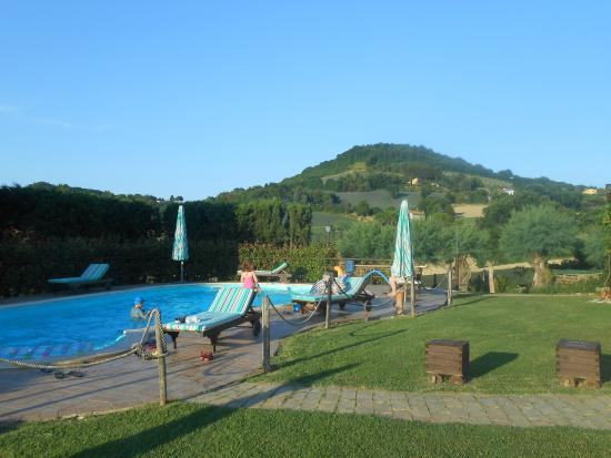 Airone Country House : veduta della piscina