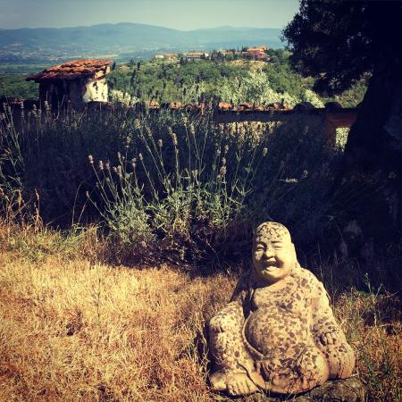 Galealpe Agriturismo: Blick ins Land