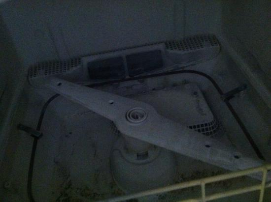 Vernon, NJ: moldy dishwasher