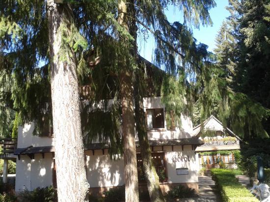 Hotel-Restaurant du Chateau d'Andlau: vue de la terrasse