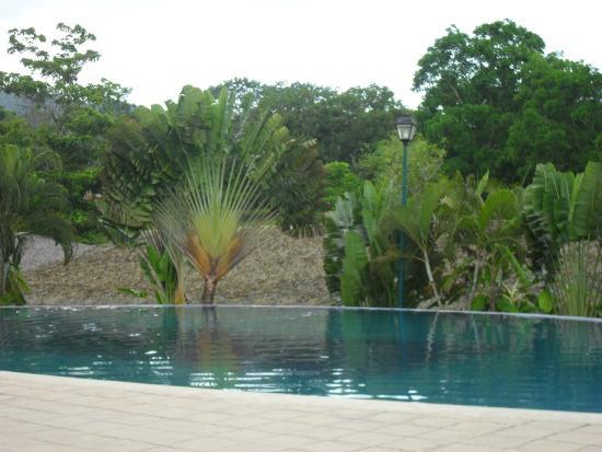 Hotel Villa Mercedes Palenque: Piscina