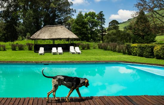 Bulwer, South Africa: pool