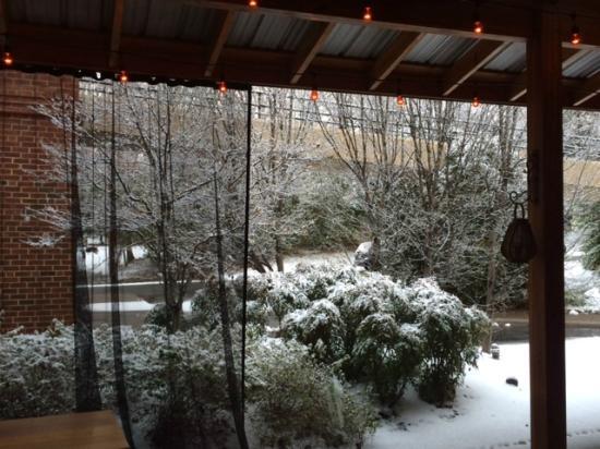 Jujube: Even in winter our zen garden is charming