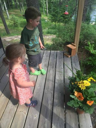 Bigfork, Миннесота: At the lodge watching the hummingbirds and chipmunks!
