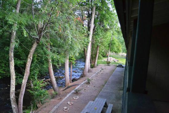 The Cub Motel: view of the creek behind the motel