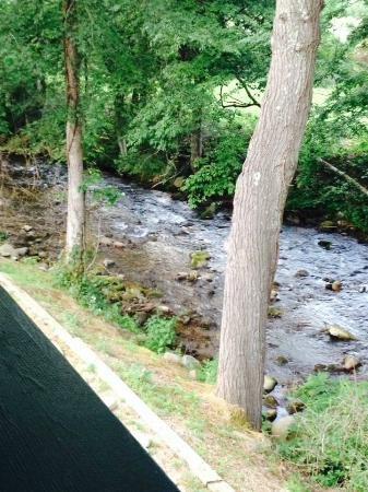 The Cub Motel: very tranquil view of the creek behind motel