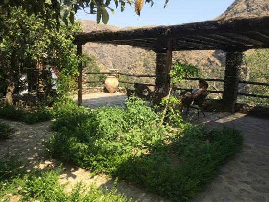 Casa Ana: Patio and garden