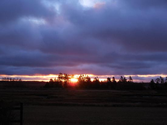 The Birches Housekeeping Cottages: Beautiful sunrise to enjoy each morning