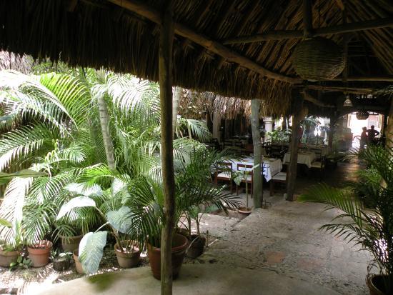 Kinich  El Sabor de Izamal : joli jardin