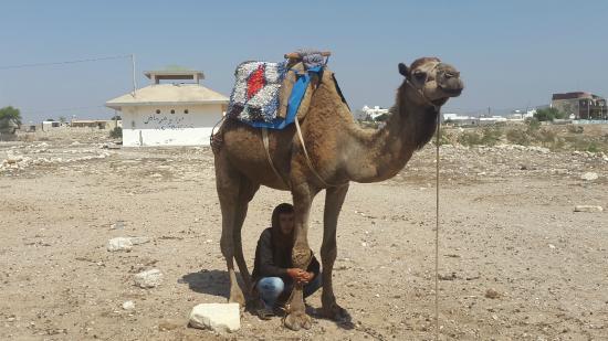Berber Space DayTours