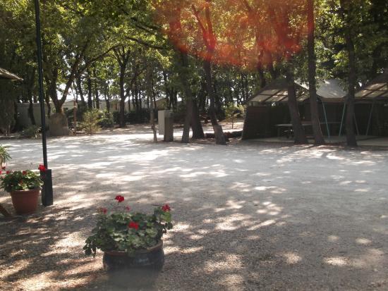 Camping Des Ecureuils