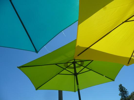 Evolve Cellars: appreciated the cheery umbrellas on a hot afternoon.