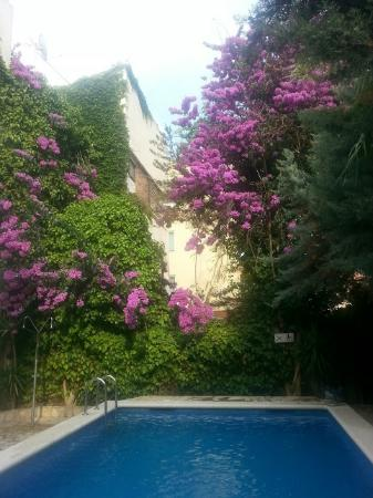 Photo of Hotel Marbella Roses