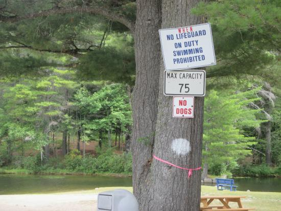 Chestertown, NY: Signs at Public beach next door