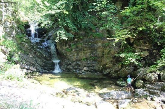 St. Wolfgang, النمسا: Wasserfall am Dittelbach
