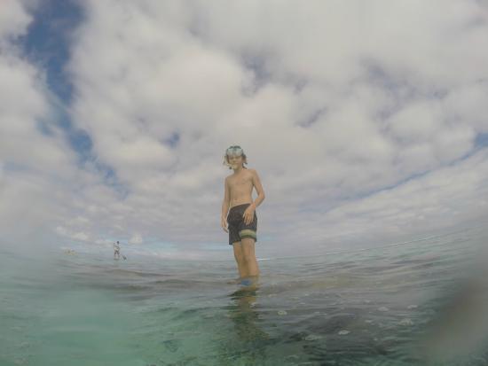 Kia Orana Beach Bungalows : Snorkeling Nick