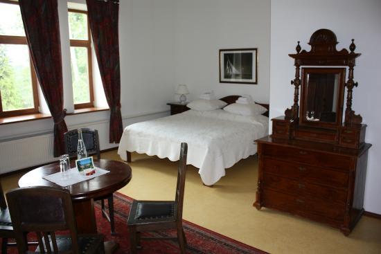 Hotel Grasu Pils: Hotel room