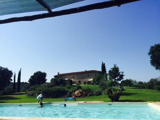 Tenuta di Seripa : The pool