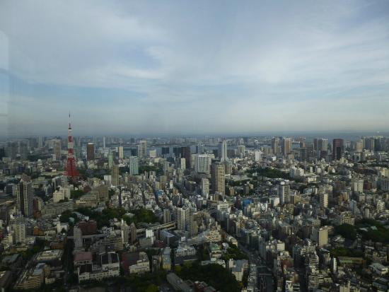 Tokyo - Picture of Tokyo City View Observation Deck (Roppongihills), Minato -...