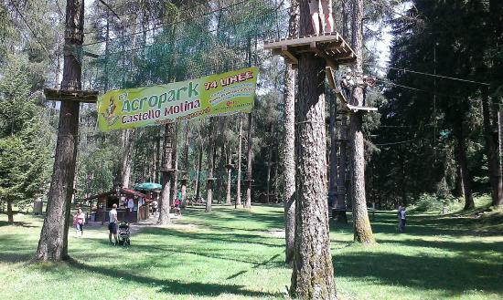 Adventure Dolomiti - Acropark Castello Molina: Acropark