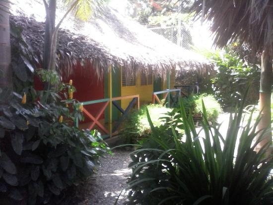 Mis grata experiencia en Cabarete Surfcamp