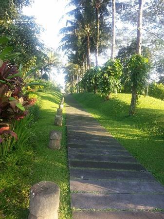 Maya Ubud Resort & Spa: لن تمل المشي في انحاء المنتجع