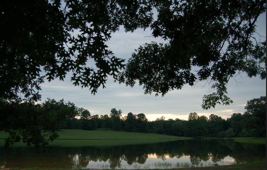 Gladys, VA: Camp views