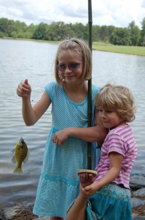 Gladys, VA: Fishing
