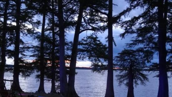 Blue Bank resort - Picture of Reelfoot Lake State Park