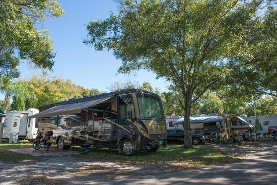 Vacation Village Rv Resort Largo Fl Campingplads
