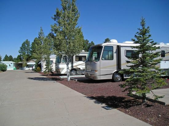fool hollow lake picture of venture in rv resort show. Black Bedroom Furniture Sets. Home Design Ideas