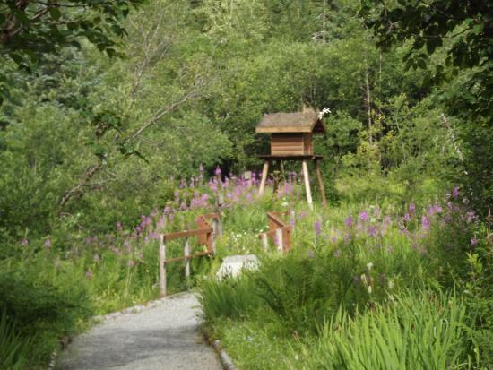 Juneau Rainforest Garden: along the trail