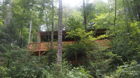 Get n luckey cabin view from below picture of cabins of for Tripadvisor asheville nc cabins