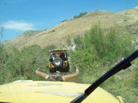 Galilee Jeep : Spennende
