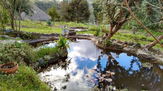 Casa Mojanda: The Pond and the Garden